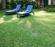 Sun loungers on the green lawn. Stock Images