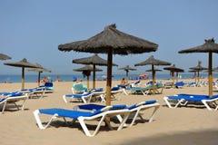 Sun loungers and parasols, Victoria Beach, Costa de la Luz, Cadiz, Andalusia, Spain Stock Images