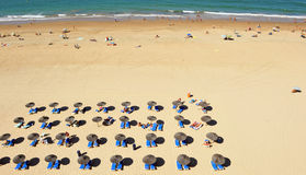 Sun loungers and parasols, Victoria Beach, Costa de la Luz, Cadiz, Andalusia, Spain Stock Photography