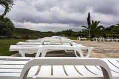 Sun Loungers beside swimming pool stock image