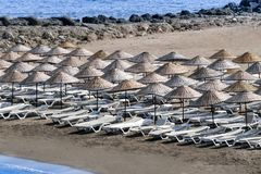 Sun loungers and umbrellas on beach on a sunny summer morning.  stock photography