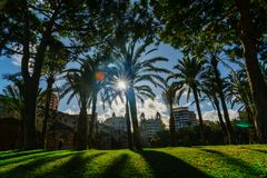 Turia Park during the sunset and Fallas holiday in Valencia in 2018 Royalty Free Stock Photos