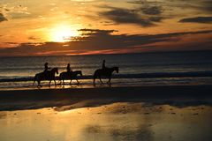 An outline forms with sunrise coming of a group of horseback riders stock images