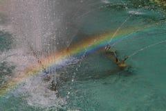 Sun is making rainbow Royalty Free Stock Photo