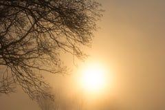Sun in the mist Royalty Free Stock Photos