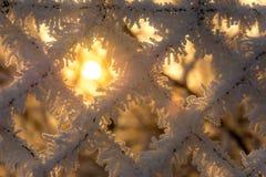 Sun mit gefrorenem Zaun Lizenzfreie Stockfotos