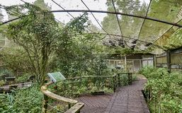 SUN MOON LAKE, TAIWAN - NOVEMBER 9, 2017: Butterfly garden on 9 Stock Photo