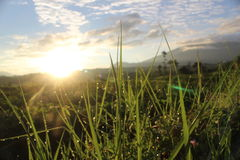 Sun in the morning. Landscape in beautiful place with sun view Stock Photography