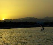 Sun Nabq ajustado Imagem de Stock Royalty Free