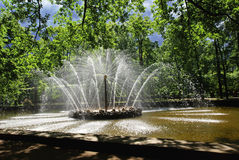 Sun named fountain Peterhof Royalty Free Stock Photography