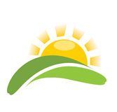 Sun nature vector icon. Abstract sun nature symbol. Sunrise and green grass stock illustration