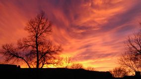 Sun no fogo Imagens de Stock Royalty Free