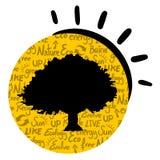 Sun oak Royalty Free Stock Image
