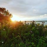 Sun och hav Royaltyfri Foto