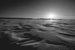 Sun och Snow Royaltyfri Foto
