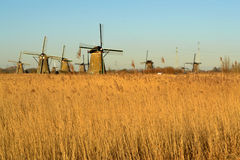 Sun olandese del mulino a vento Fotografia Stock Libera da Diritti