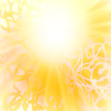Sun, orange yellow abstract background. Stock Images