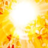 Sun, orange yellow abstract background. Stock Image