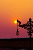 The Sun ormlampa Arkivfoton