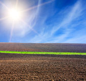 Sun over arable field with green line. Of grass Royalty Free Stock Photography