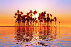 Sun over coconut palms. Island on tranquil tropic sea Royalty Free Stock Photos