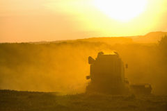 Sun over combine harvesting wheat in rural field Stock Photos