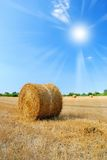 Sun  over countryside in august Royalty Free Stock Photography