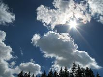 Sun over the forest. Summer sun and afternoon clouds over the forest Royalty Free Stock Photography