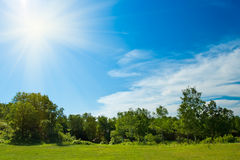 Sun over the forest Royalty Free Stock Photography