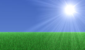 Sun over grass Royalty Free Stock Photos