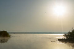 Sun over Lake Panasoffkee, USA. Sun shining in clear sky over calm surface of Lake Panasoffkee, Florida, USA Stock Photo