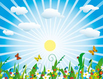 The sun over a meadow Stock Image