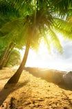 Sun over ocean Royalty Free Stock Image