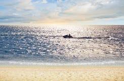 Sun over tropical beach Stock Photography