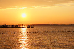 Sun Over Water with Pilings and Clouds. Sunset or sunrise over the water with the sun's reflection in the water. Birds sitting on pilings are visible Stock Photos