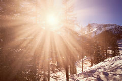 Sun over winter mountains covered with snow Royalty Free Stock Image