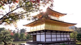 Sun over Golden Pavilion Kinkaku-ji during momiji season, Kyoto, Japan stock video footage
