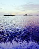 Sun-Ozeanfischen lizenzfreies stockbild