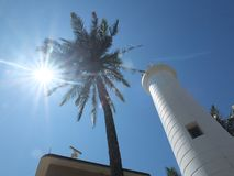 Sun, palm and lighthouse royalty free stock image