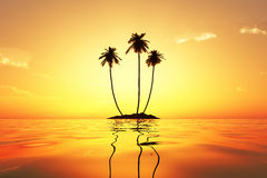 Sun in palms Royalty Free Stock Image