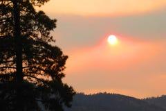 Sun par le brouillard, Montana Image stock