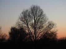 Sun para baixo Dendermonde Imagens de Stock Royalty Free