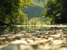 Shiny shore in the mountains. The sun peeked into the gorge and added some golden shade to stones on a mountain river shore royalty free stock photos