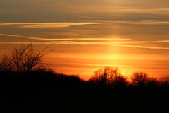 Sun pillar over some trees Stock Images