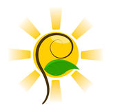 Sun and plant. Artistic symbol. Vector illustration royalty free illustration