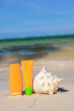 Sun protection and seashell on beach Royalty Free Stock Image