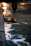 The sun in the puddles Royalty Free Stock Photos