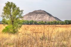 Sun Pyramid of Teotihuacan with a nice tree in the foreground royalty free stock images