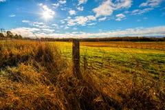 Sun que brilla abajo en un campo de granja Imagen de archivo libre de regalías