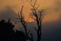 Sun que mira a escondidas de las nubes Foto de archivo libre de regalías